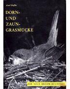 Dorn- und Zaungrasmücke