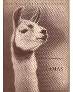 Lamas (Lámák)