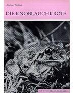 Die Knoblauchkröte (A barna ásóbéka) 1984.