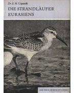 Die Strandlauffer Eurasiens (Az eurázsiai partfutó)