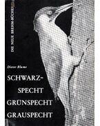 Schwarzspecht, Grünspecht, Grauspecht (A zöld-,fekete-,szürke harkály) 1966