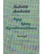 Egy igaz Szodomában - Tabák András