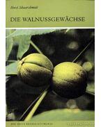 Die Walnussgewächse (A diófafélék)