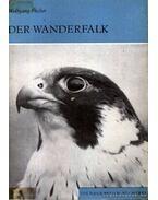 Der Wanderfalk (A vándorsólyom)