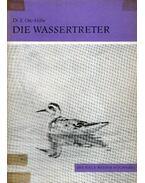 Die Wassertreter (A víztaposó)