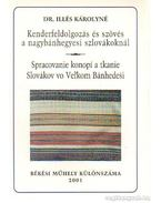 Kenderfeldolgozás és szövés a nagybánhegyesi szlovákoknál