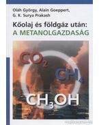 Kőolaj és földgáz után: metanolgazdaság