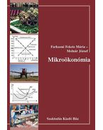 Mikroökonómia - Kopányi Mihály