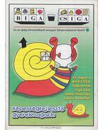 Biga-csiga IV. évfolyam 1999/Január - Kovács Zoltánné