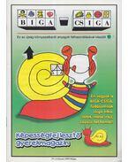 Biga-csiga IV. évfolyam 1999/Május - Kovács Zoltánné