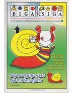 Biga-csiga IV. évfolyam 1999/November - Kovács Zoltánné