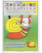 Biga-csiga V. évfolyam 2000/Április - Kovács Zoltánné