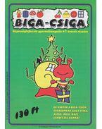 Biga-csiga VI. évfolyam 2000/December - Kovács Zoltánné
