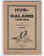 Hús-(haszon)galamb tartás