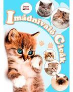 Imádnivaló cicák - Krajnik Bíró Sára