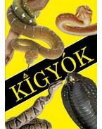 Kígyók - Krajnik Bíró Sára