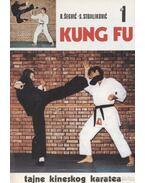 Kung fu 1.