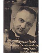 Lámpát szeretnék gyujtani (aláírt) - Zaymus Gyula