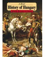 A Brief History of Hungary - Lázár István