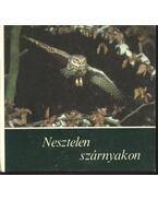 Nesztelen szárnyakon - Leipzig, Rudolf Arnold Verlag