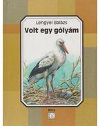 Volt egy gólyám - Lengyel Balázs