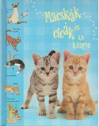 Macskák és cicák kis könyve