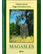 Magasles