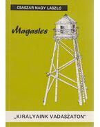Magasles -