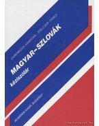 Magyar-szlovák kéziszótár