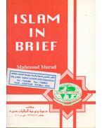 Islam in Brief - Mahmoud b. Ridha Murad