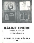 Bálint Endre festőművész kiállítása - Mándy Stefánia, Mucsi András
