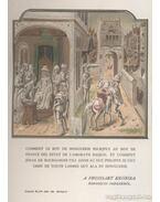 Mária Magyarország királynéja / Zay Ferencz /Széchy Mária