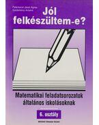 Matematikai feladatsorozatok általános iskolásoknak - 6. osztály