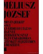 Sors és jelkép - Méliusz József