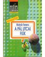 Molnár Ferenc: A Pál utcai fiúk (Matúra olvasónapló)