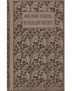 Egy pesti leány története - Molnár Ferenc