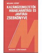 Kazánüzemeltetők hibaelhárítási és javítási zsebkönyve - Molnár József
