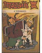 A tűzvarázs (Mozaik 1990/1.)