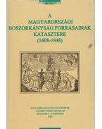 A magyarországi borszorkányság forrásainak katasztere (1408-1848)