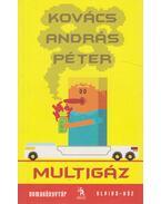 Multigáz