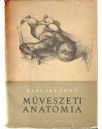 Művészeti anatómia