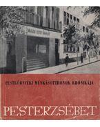 A Pesterzsébeti munkáskultúra útja - Nagy Dezső