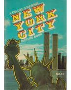 New York City Picture Book