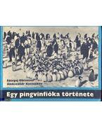 Egy pingvinfióka története - Obrazcov, Sz., Kocsetkov Alekszandr