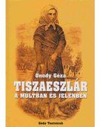 Tiszaeszlár a múltban és jelenben - Ónody Géza