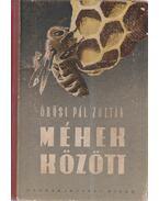 Méhek között - Örösi Pál Zoltán
