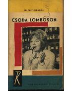 Csoda Lomboson - Pálfalvi Nándor