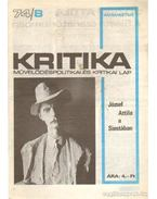 Kritika 74/8 - Pándi Pál