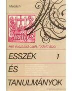 Esszék és tanulmányok I. kötet - Pasiaková, Jaroslava