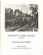Perlrott-Csaba Vilmos festőművész emlékkiállítása